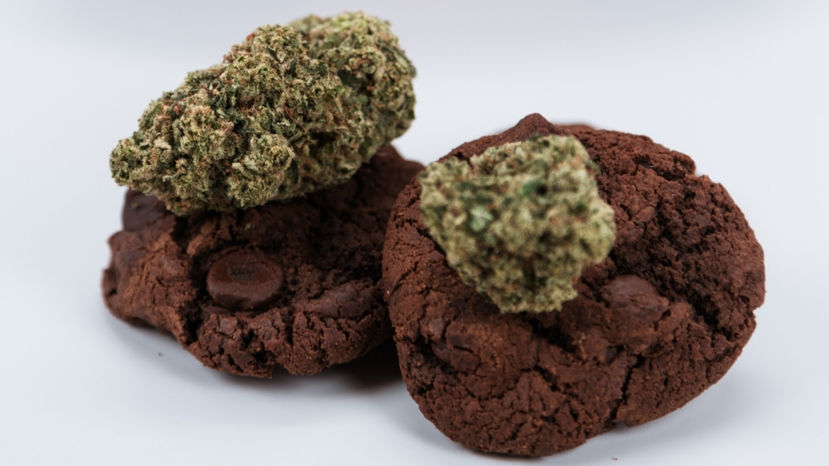 double-fudge chocolate cookies with cannabis nugs on top