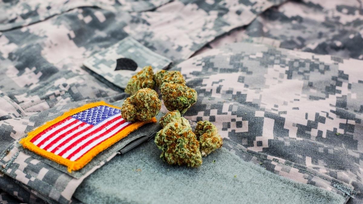 Medical Cannabis for Veterans